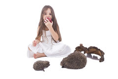 Beautiful little girl eating an apple. Beautiful little girl playing with family of hedgehogs with apple in her hands Royalty Free Stock Images