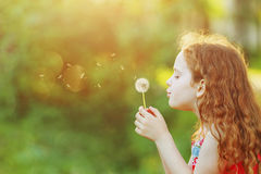 Beautiful little girl enjoying blowing dandelion. Dreaming  in spring park with copy space Royalty Free Stock Photo