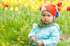 Beautiful little girl on a field of colured tulips Royalty Free Stock Photos