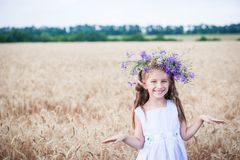 Beautiful little girl  in a field of wheat Stock Photos