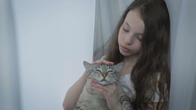 Beautiful little girl gently communicates with loved cat at window. stock video footage