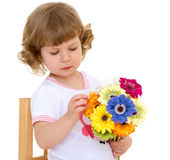 Beautiful little girl. With beautiful hairstyle holds a bouquet of flowers on a white background on Holiday. Isolated on white background royalty free stock photography