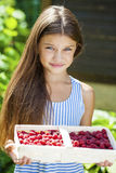 Beautiful little girl holding a box with a raspberry Stock Photos