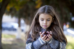 Beautiful little girl holding a chestnut Stock Images