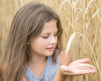 Beautiful little girl holding wheat spike on hand palms in field at summer day. Concept of purity, growth, happiness stock photography