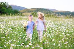 Beautiful little girl hugging a little boy in a field of chamomi Royalty Free Stock Photos