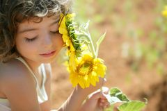 Free Beautiful Little Girl In A Summer Sunflower Field Royalty Free Stock Photography - 11162057