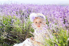 Beautiful little girl in lavender field Stock Photography