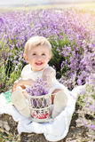 Beautiful little girl in lavender field Stock Image