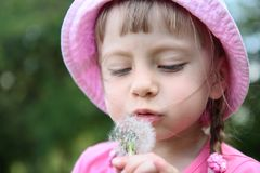 Beautiful little girl on  lawn with dandelions Stock Photo