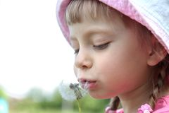 Beautiful little girl on  lawn with dandelions Stock Image
