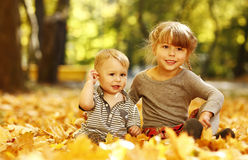Beautiful little girl with a little brother in the autumn park p Royalty Free Stock Photo
