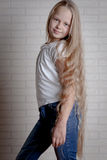 Beautiful little girl with long hair Royalty Free Stock Photography
