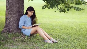 A Beautiful little girl with long hair reads a book sitting under a tree on a sunny day. A Beautiful little girl with long black hair and in a blue dress reading stock video