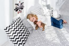 Beautiful little girl is lying with puppy of dachshund dog in bed royalty free stock photos