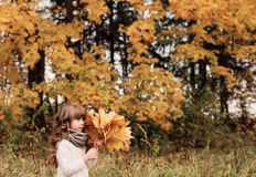 Beautiful little girl with maple leaves Stock Photography