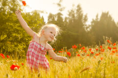 Beautiful little girl on a meadow royalty free stock photo