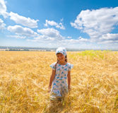 Beautiful little girl in a meadow Royalty Free Stock Photo