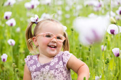 Beautiful little girl on a meadow Royalty Free Stock Photos