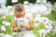 Beautiful little girl on a meadow Stock Photo