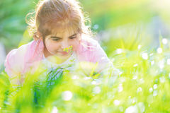 Beautiful little girl on the meadow Royalty Free Stock Photography