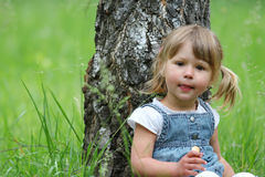 Beautiful little girl on nature Stock Photography