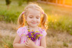 Beautiful little girl picking flowers in a meadow. Summer sunny day Stock Photos