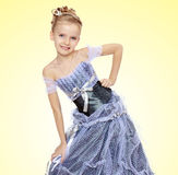 Beautiful little girl in Princess dress. Royalty Free Stock Photography