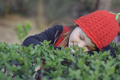 Beautiful little girl, with red cap in green plantations. Girl in the park among the bushes Stock Photography