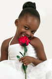 Beautiful little girl with red rose. Beautiful African American little girl with red rose over white background stock image