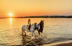 Beautiful little girl riding horse in  sunset by the sea on the Stock Photo