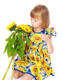 Beautiful little girl sees a beautiful yellow Stock Image