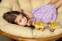 Beautiful little girl sends a kiss. Cute fluffy Easter ducklings walk alongside the girl.  stock photo