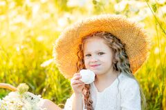 Beautiful little girl sitting in a straw hat in a field and eating marshmallows, picnic in a field