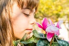 Beautiful little girl  smelling cyclamen flower Stock Photos