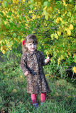 Beautiful little girl stands next to yellow trees Royalty Free Stock Photo