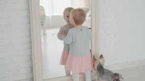 Beautiful little girl stay near the mirror with dog. Slow Motion. Baby milestone, toddler, 1 year old. Happy childhood.  stock footage
