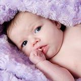 Beautiful little girl in studio Royalty Free Stock Image