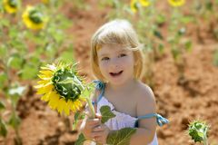 Beautiful little girl in a summer sunflower field Royalty Free Stock Photo