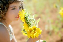Beautiful little girl in a summer sunflower field Royalty Free Stock Images