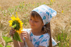 Beautiful little girl and sunflower Stock Images