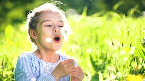 Beautiful little girl blowing dandelion at summer day. Beautiful little girl at sunny summer day blowing dandelion on green meadow. Summer fun concept stock video footage