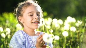 Beautiful little girl blowing dandelion at summer day. Beautiful little girl at sunny summer day blowing dandelion on green meadow. Summer fun concept. Slow stock footage