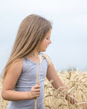 Beautiful little girl tearing wheat ears in field at summer day. Concept of purity, growth, happiness royalty free stock images