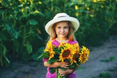 Beautiful little girl in white wide brimmed hat with sunflower flowers in the field Royalty Free Stock Photography