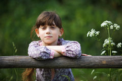 Beautiful little girl among the wildflowers Royalty Free Stock Photos