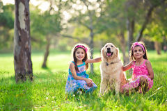 Beautiful little girls and golden retriever. Outdoors royalty free stock image