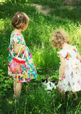 Beautiful little girls (sisters) in the Park with the cat. The image is tinted Royalty Free Stock Images