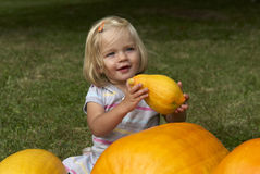 Beautiful little kid girl having fun with farming on organic pumpkin patch Stock Images