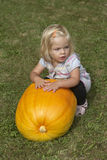 Beautiful little kid girl having fun with farming on organic pumpkin patch Stock Image